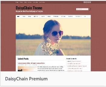 WordPress theme DaisyChain
