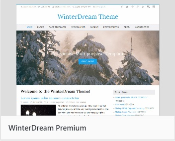 WordPress theme WinterDream