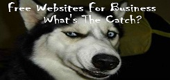 free website what the catch