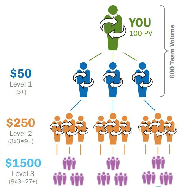 doTERRA pyramid scheme