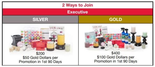 Gold Canyon candles review enrollment kits