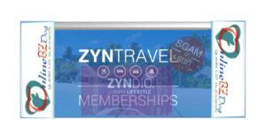 Zyndio Review