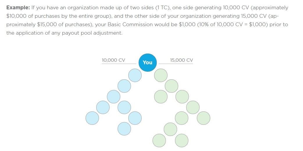 synergy worldwide basic commission
