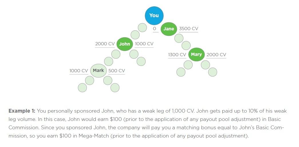 synergy worldwide mega-match bonus explain